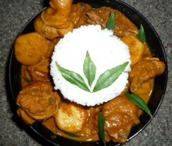 Basic Hot Chicken Curry 5