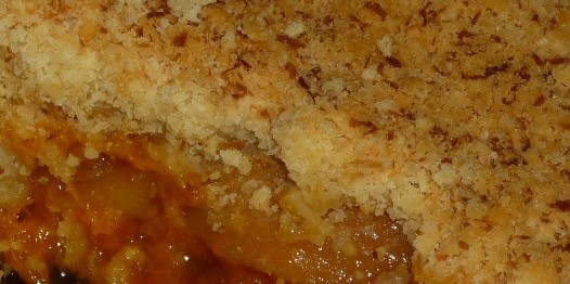 CF 51of60 Apricot apple crumble4